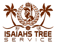 Kauai's #1 Tree Trimming Company