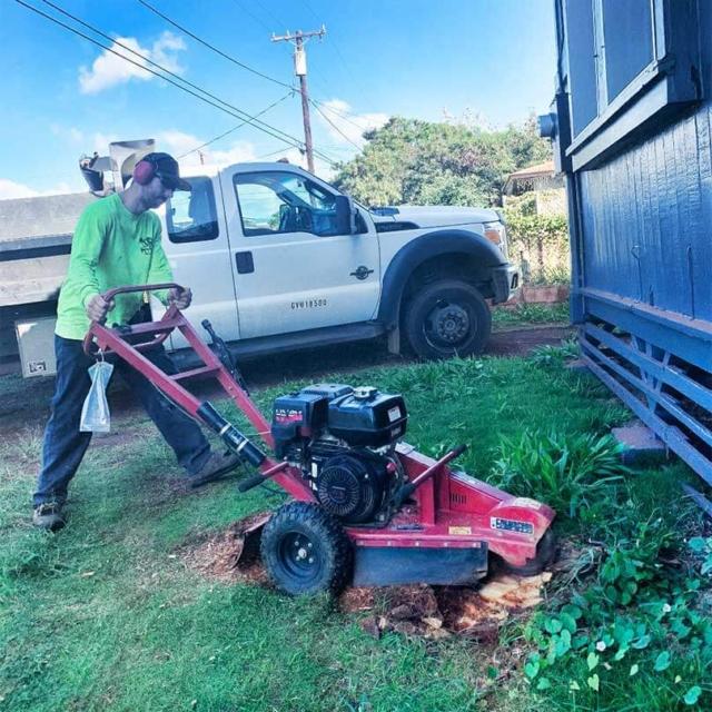 Isaiah's Tree Service - Stump Grinding on Kauai