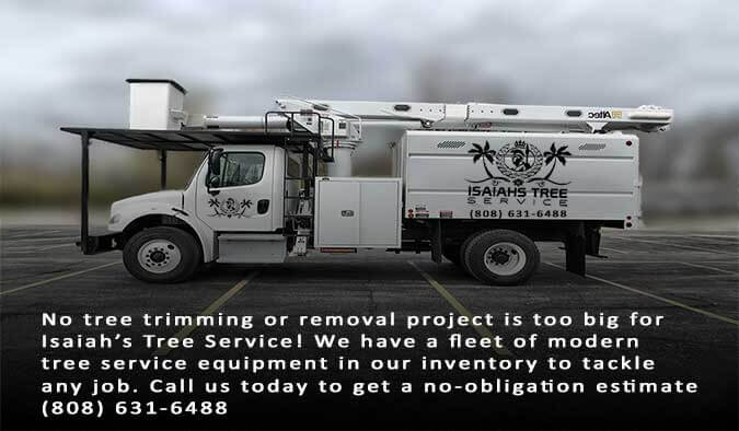 What You Need To Know About Bucket Trucks